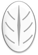 Langblatt-Muster für Brote