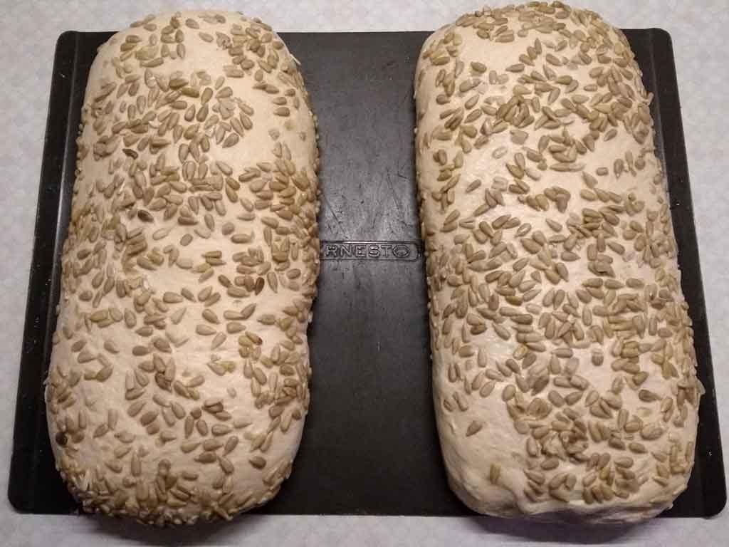 Sonnenweizen-Brot in Sonnenblumenkernen gewälzt